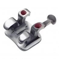 Miniature Twin 022