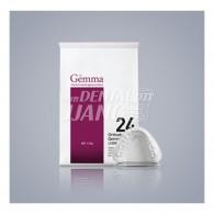 Orthodontic Gemma 24 18kg (교정용스톤)